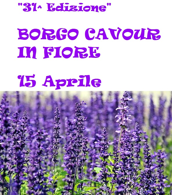 Borgo Cavour In Fiore